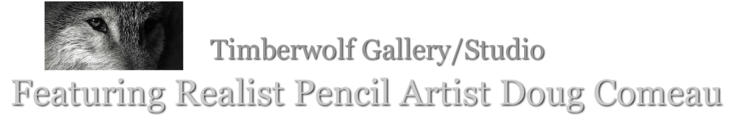 Timberwolf GalleryArt & Custom Framing Featuring Realist Pencil Artist Doug Comeau